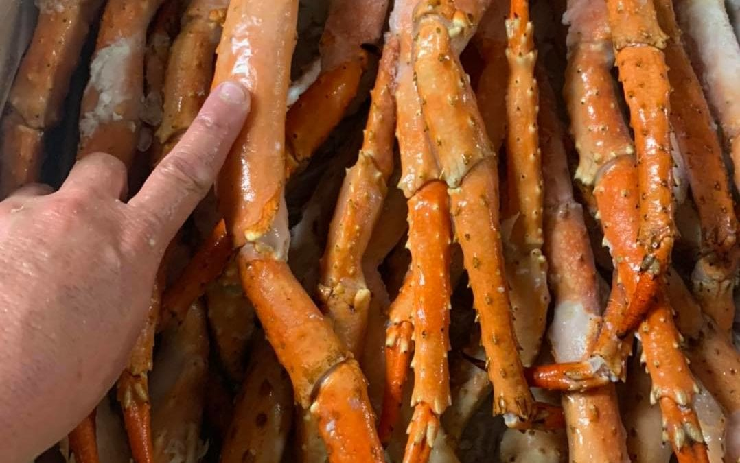 gigantic crab legs with a finger for comparison
